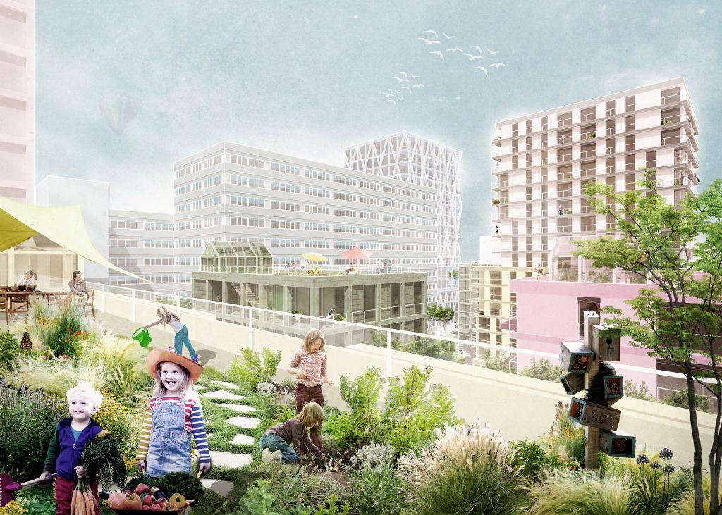 Die Dachlandschaft bietet zusätzliche, gemeinschaftliche Freiräume für eine hohe Lebensqualität in der Stadt.