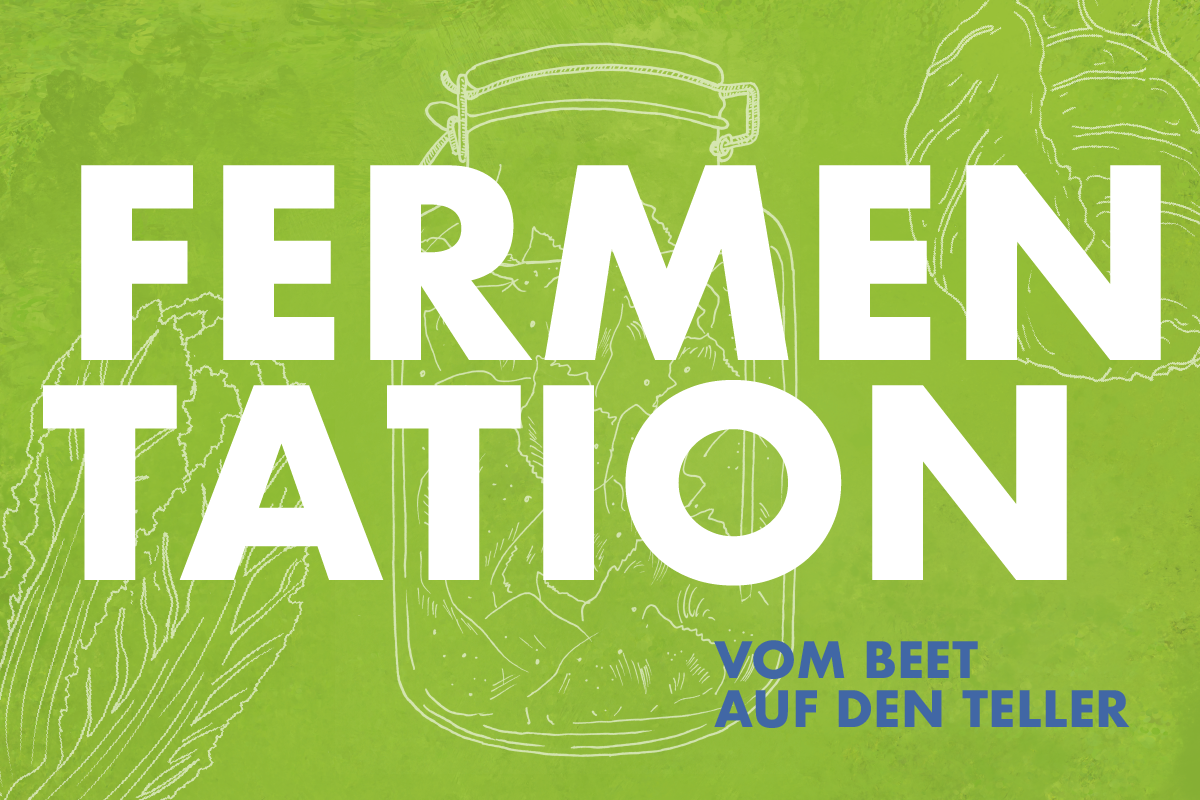 Workshop: Fermentation